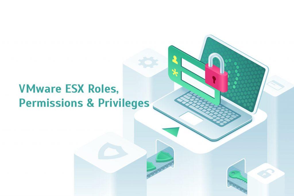 VMware ESX Roles